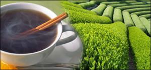 tea62_l