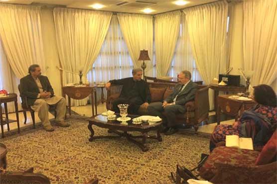 پی ٹی آئی رہنماؤں کی ترک سفیر سے ملاقات