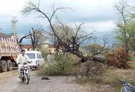 ساہیوال:تیز آندھی 'ژالہ باری و بارش کے باعث کئی درخت اکھڑ گئے